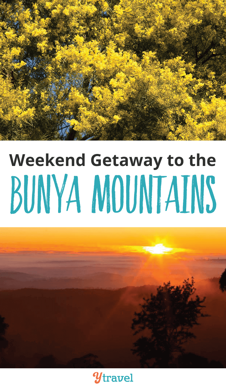 Plan a lovely weekend Getaway to the Bunya Mountains in Queensland.