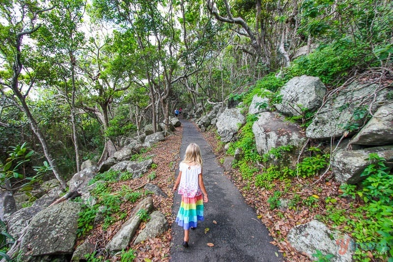 15 Free & Cheap Things to Do on the Gold Coast for Families