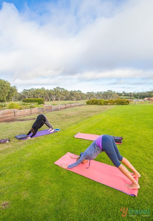 Practicing yoga in the Barossa Valley, South Australia