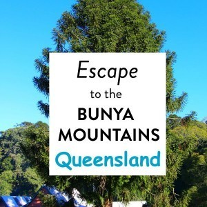 Weekend escape to the Bunya Mountains in Queensland, Australia
