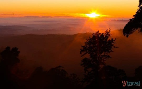 Sunrise in The Bunya Mountains, Queensland, Australia