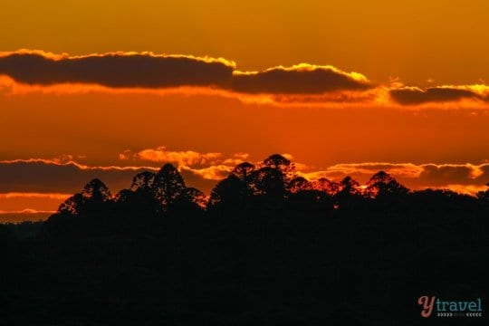 Sunset in the The Bunya Mountains, Queensland, Australia