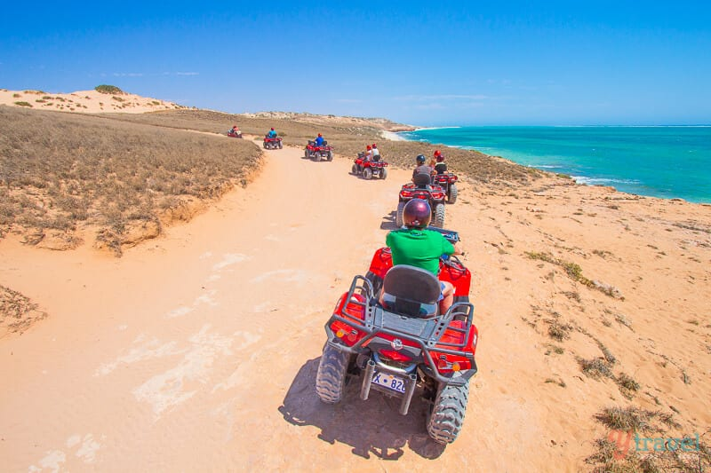 Go quad biking at Coral Bay in Western Australia