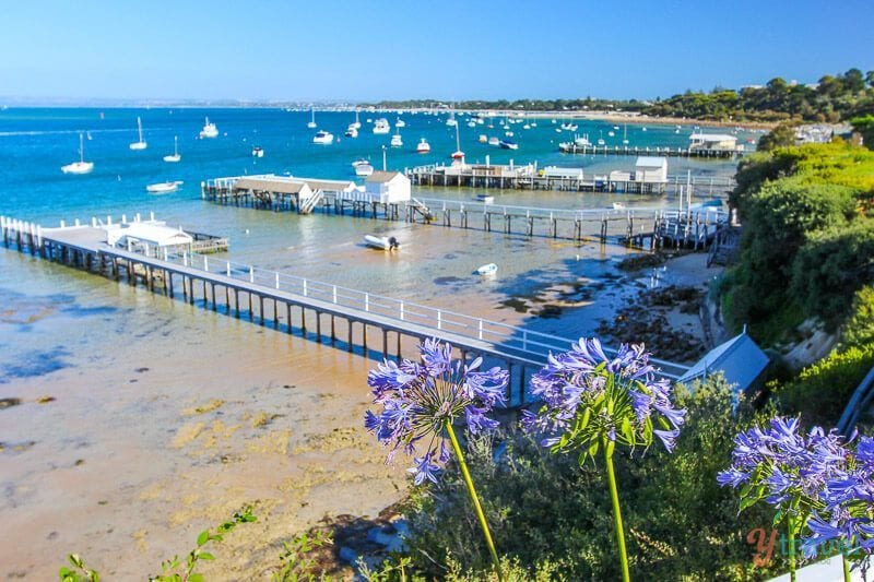 The Mornington Peninsula is a great getaway destination from Melbourne. Here's why!