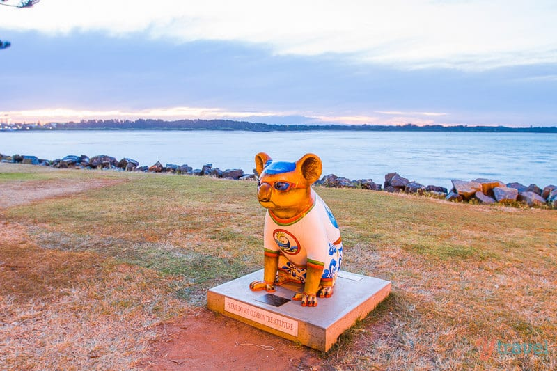 Koala sculpture in Port Macquarie, NSW, Australia