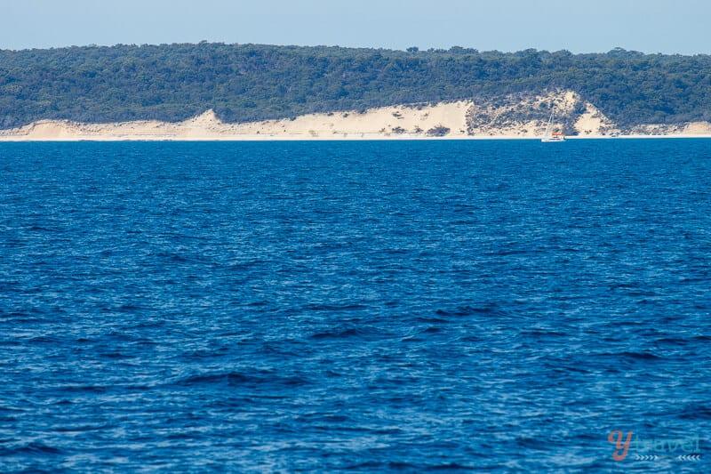 Whale watching in Hervey Bay, Queensland, Australia