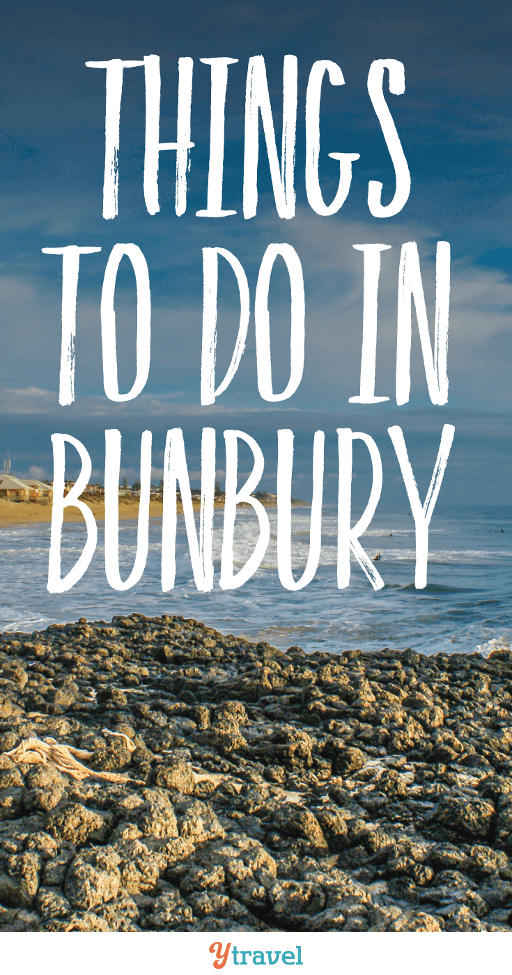 Check out this quieter destination on the west coast of Australia. We've got you covered for some really cool things to do in Bunbury.