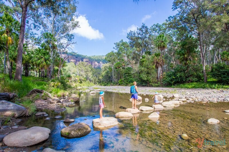 Carnarvon Gorge National Park, Queensland, Australie