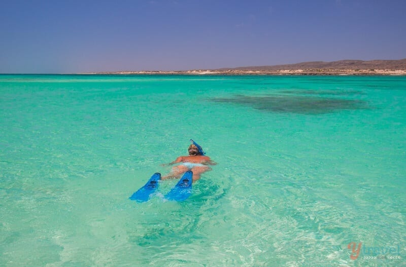 Ningaloo Reef - one of Australia's natural wonders