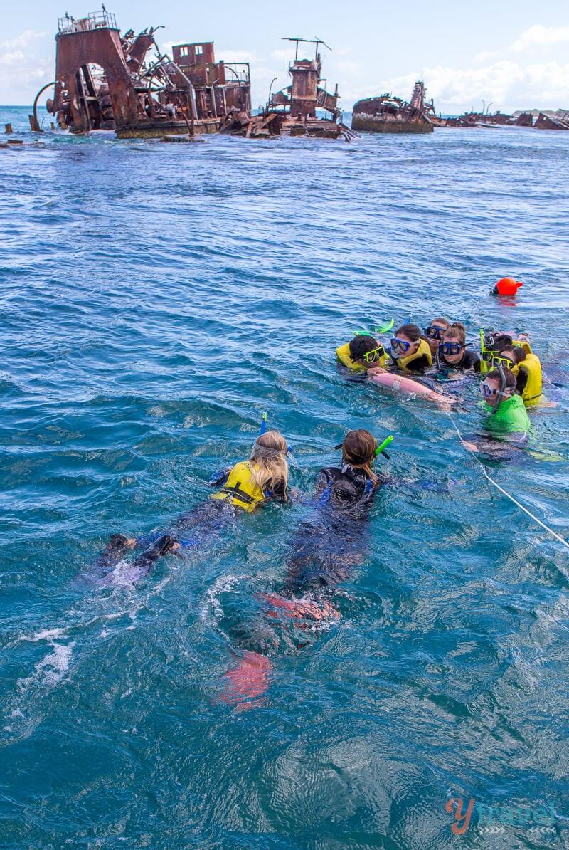 Snorkeling the Tangalooma Wrecks on Moreton Island, Queensland, Australia