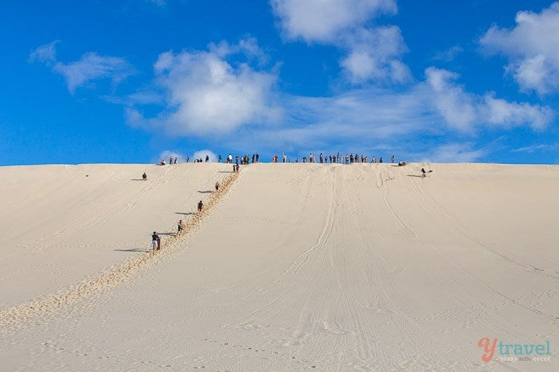 Sandboard sur l'île Moreton, Queensland