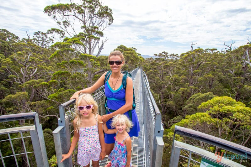 Tree Top Walk dans la vallée des géants, Australie occidentale