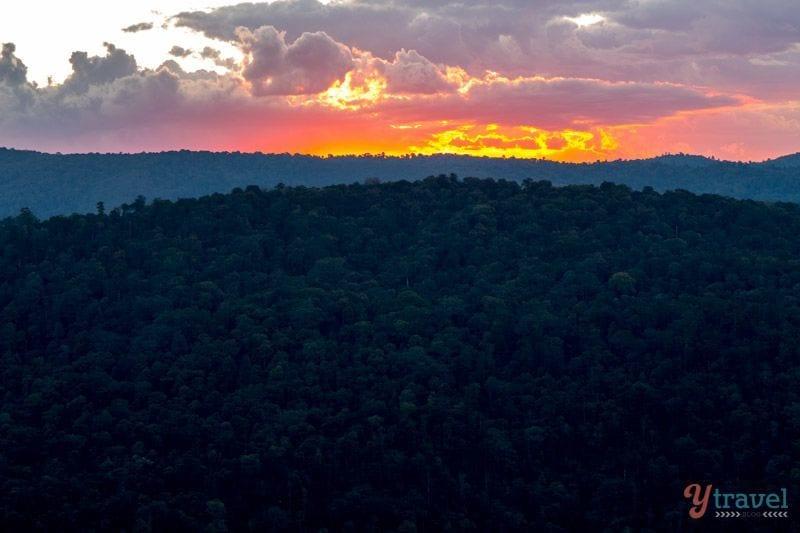 Sunset in the Binna Burra Mountains in Lamington National Park, Gold Coast Hinterland, Australia