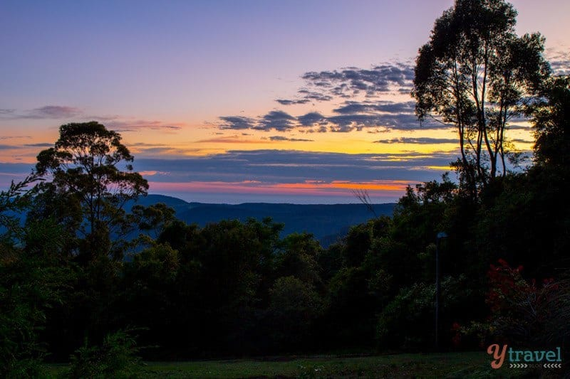 Sunrise at Binna Burra in Lamington National Park, Gold Coast Hinterland, Queensland