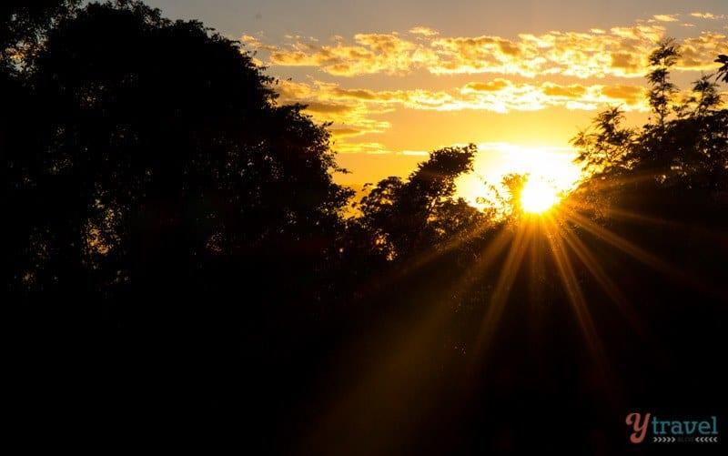 Sunrise at Binna Burra in Lamington National Park, Gold Coast Hinterland, Queensland