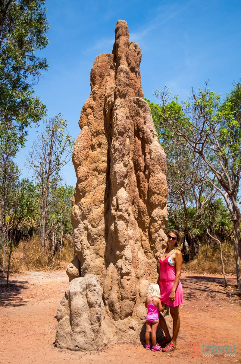 See the giant termite mounds in Litchfield National Park, Northern Territory of Australia