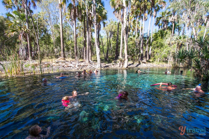 Mataranka Hot Springs in the Northern Territory of Australia