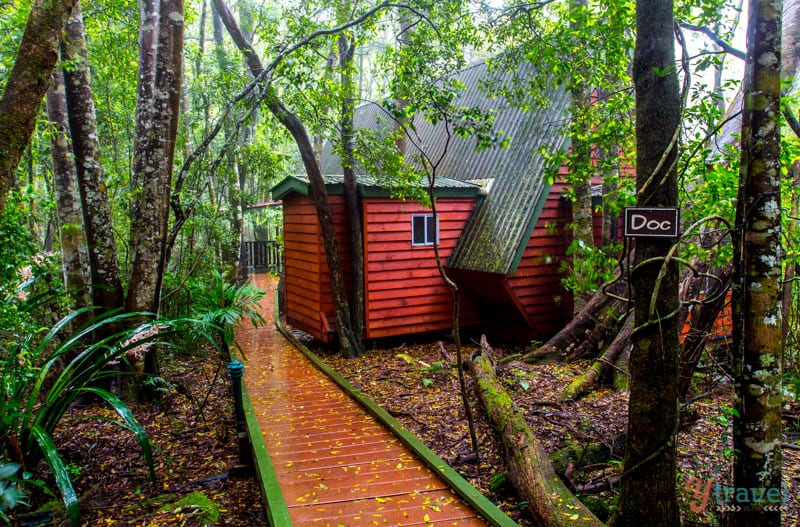 Mouses House Rainforest retreat - Gold Coast Hinterland