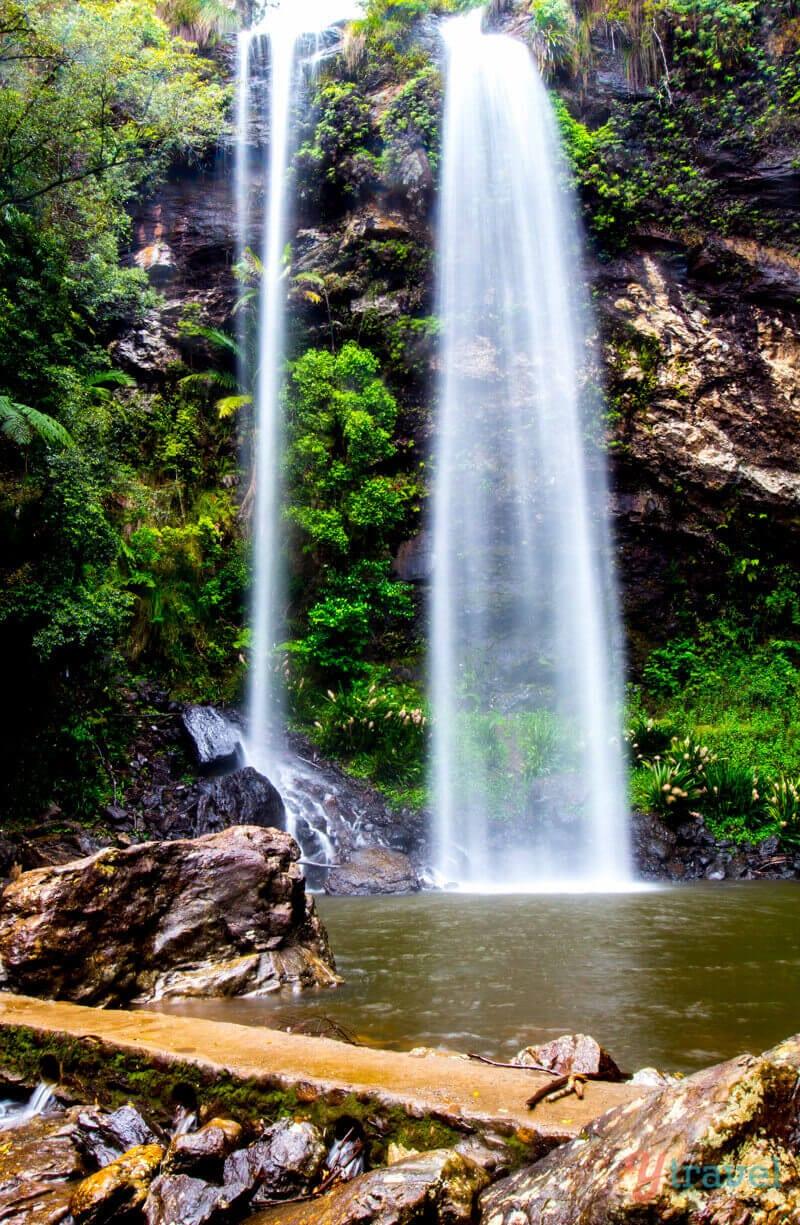 Twin Falls dans le parc national Springbrook, arrière-pays de la Gold Coast, Queensland, Australie