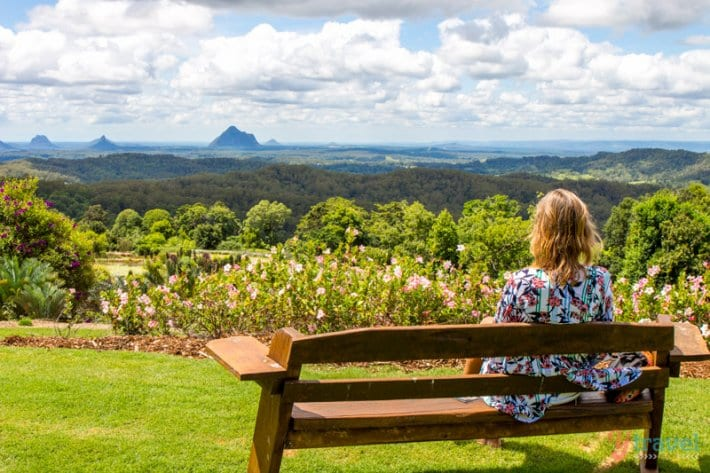 Maleny Botanical Gardens - Sunshine Coast Hinterland, Queensland, Australia
