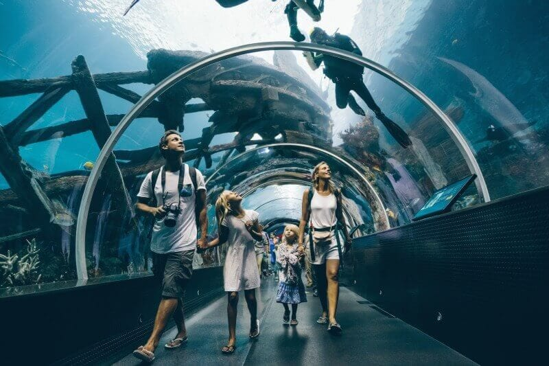S.E.A aquarium in Singapore - one of the best things to do in Singapore with kids!