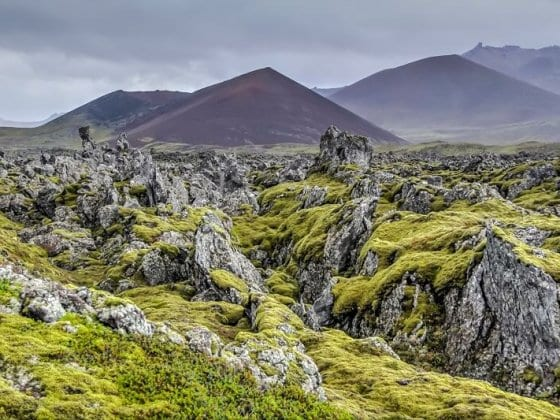 Berserkjahraun - a stunning place to see on your Iceland road trip!