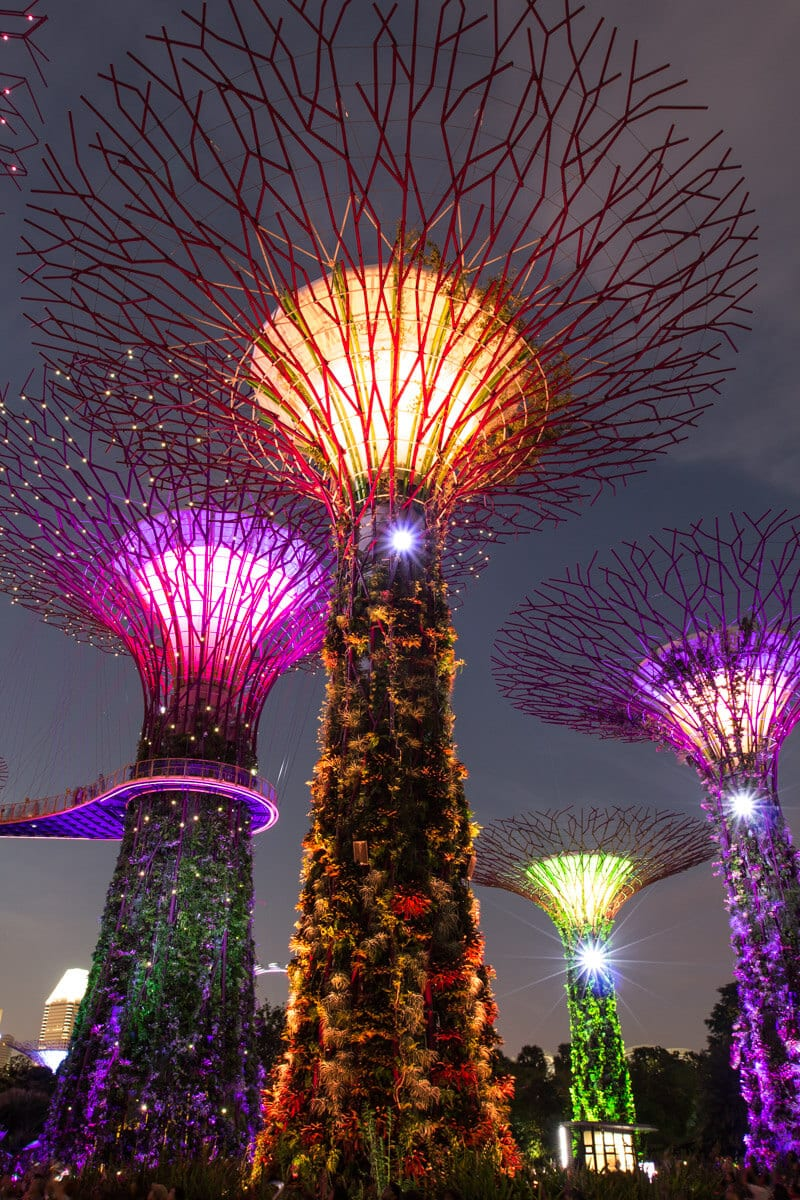 Rhapsody Light & Sound Show at Gardens by the Bay - one of the best things to do in Singapore with kids