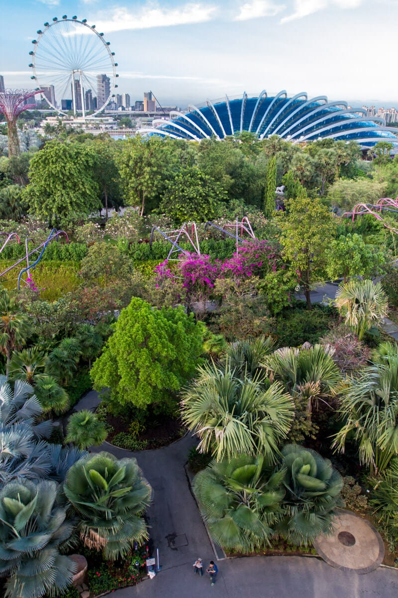 Gardens by the Bay - one of the best things to do in Singapore with kids