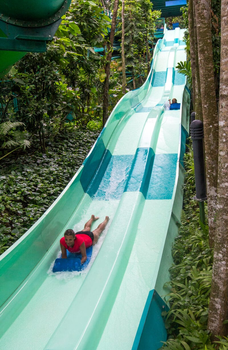 8 Fun Things To Do In Singapore With Kids Where To Eat Sleep