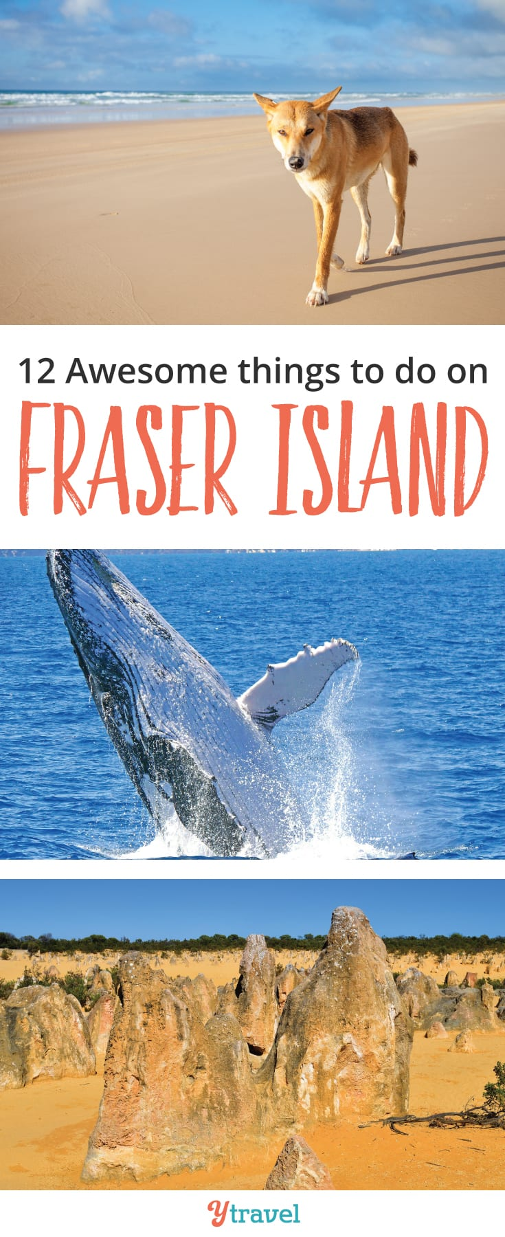 Things to do on Fraser Island: Fraser Island is the largest sand island in the world and one of the most beautiful to explore in Queensland, Australia. Check out the post for some epic adventures to have on Fraser Island including beach driving, whale watching and dingo watching.