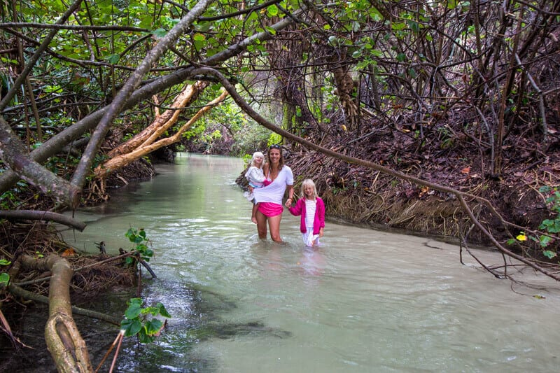 Eli Creek - one of the most popular things to do on Fraser Island in Australia