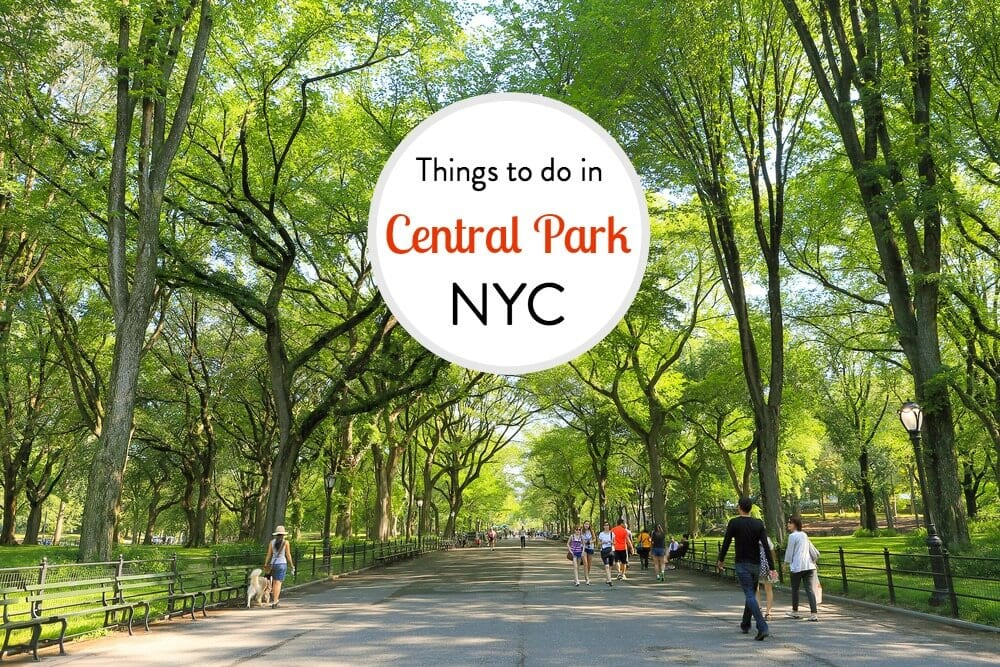 things to do in central park nyc in each season