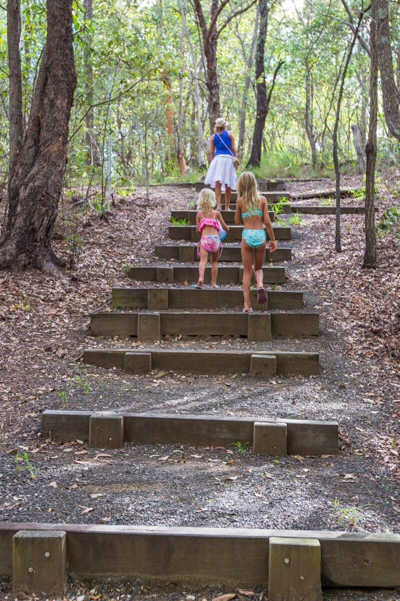 Denmark Hill Conservation Area walk - Ipswich, Queensland