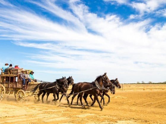 Stagecoach ride with Kinnan & Co in Longreach, Outback Queensland