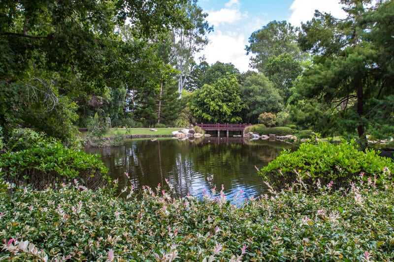 Nerima Gardens Ipswich
