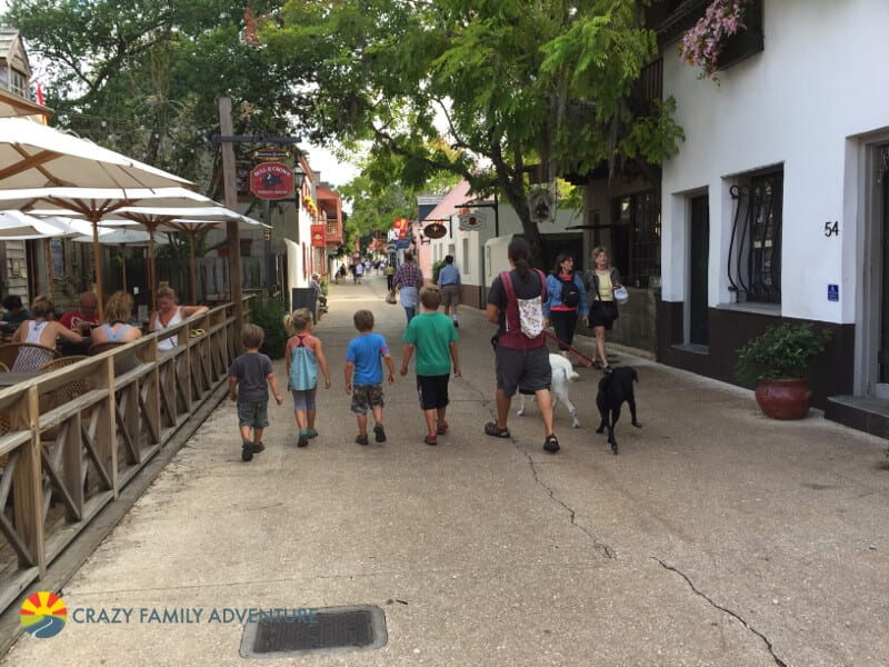 how to travel with dogs - pet friendly places to visit.