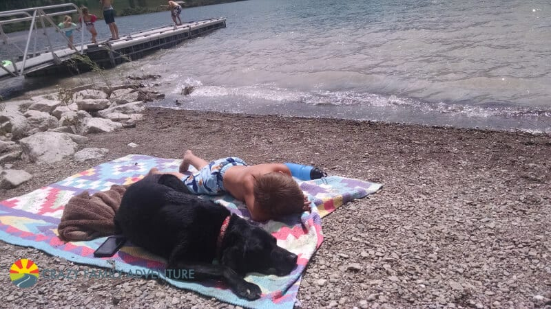 Dog friendly locations when your traveling with dogs!