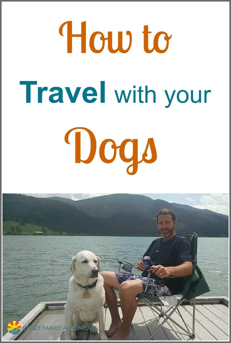 view traveling with your pets