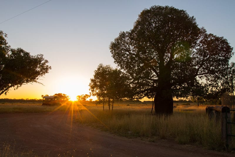 Sunrise at Bonus Downs Farmstay, Outback Queensland
