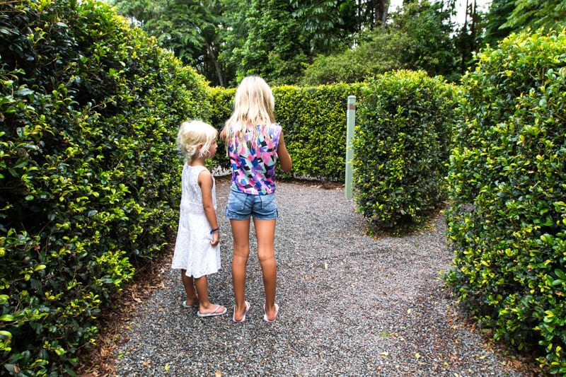 Bellingham Maze - Sunshine Coast, Queensland