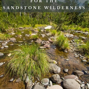 Sandstone wilderness