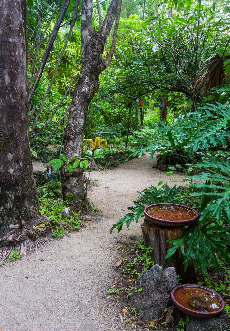 Ulysses Garden Cafe, Finch Hatton Gorge, Mackay, Queensland