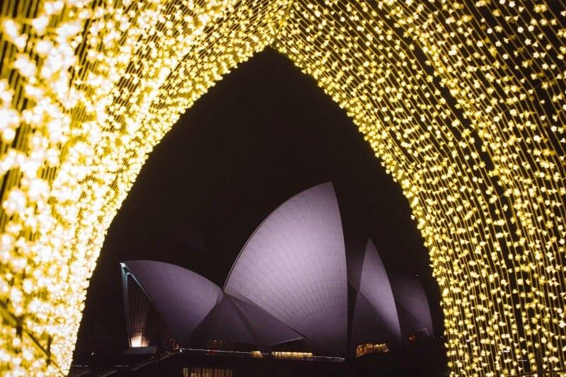 Sydney's Royal Botanic Gardens during the Vivid Sydney Festival