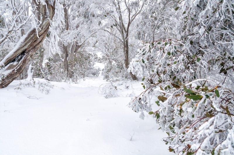 Best winter holiday destinations in Australia