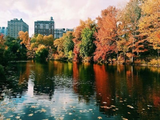 Seven best parks in NYC