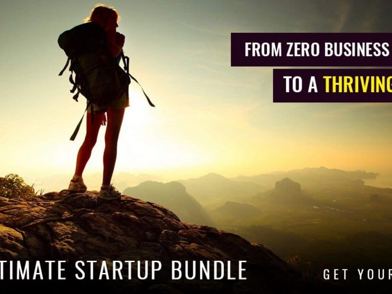 How to go from Zero to thriving business in 12 months