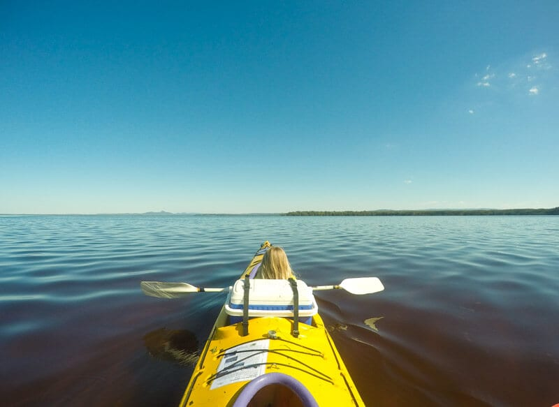 Kayaking in the Noosa Everglades, Queensland, Australia