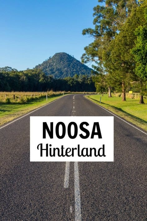 Road tripping with Logitech Zero Touch through the Noosa Hinterland in Queensland, Australia
