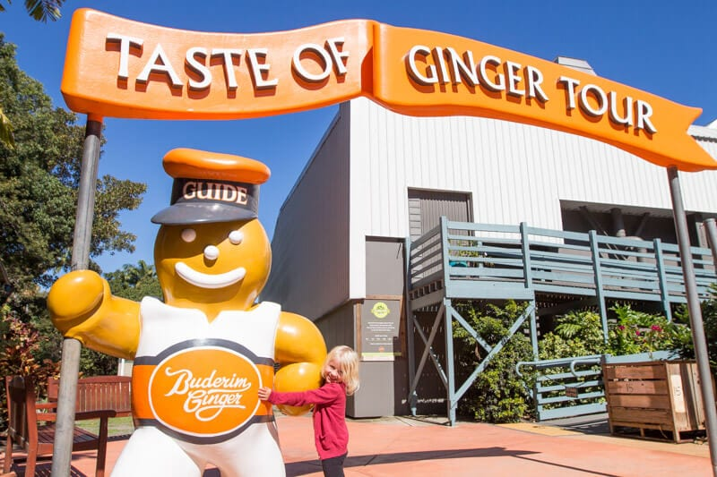 Ginger Factory in Yandina, Sunshine Coast, Queensland, Australia