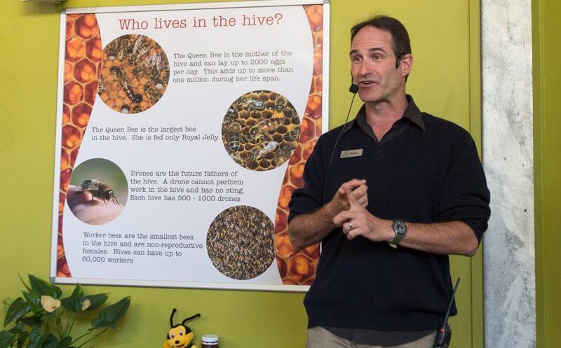 Bee talk at the Ginger Factory in Yandina, Sunshine Coast, Queensland, Australia